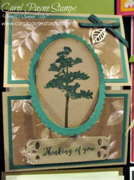 Stampin_up_rooted_in_nature_carolpaynestamps0