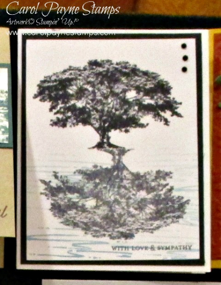 Stampin_up_rooted_in_nature_carolpaynestamps3