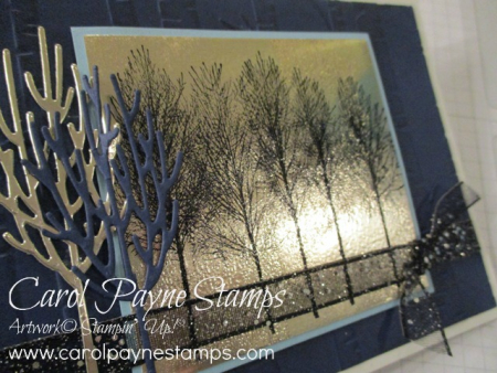Stampin_up_winter_woods_black_ice_carolpaynestamps2