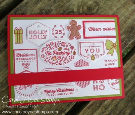 Stampin_up_tags_&_tidings_carolpaynestamps1-2