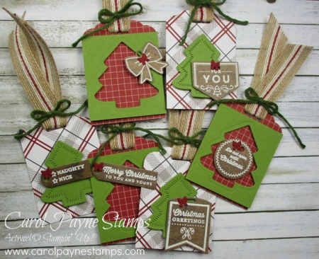 Stampin_up_tags_&_tidings_carolpaynestamps1
