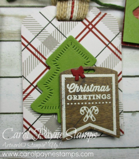 Stampin_up_tags_&_tidings_carolpaynestamps8