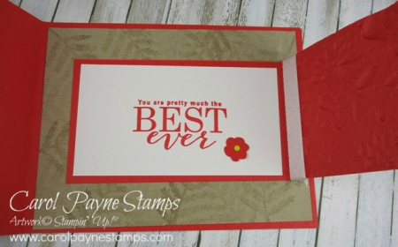 Stampin_up_all_adorned_carolpaynestamps3