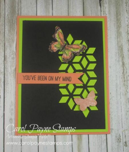 Stampin_up_butterfly_gala_carolpaynestamps6