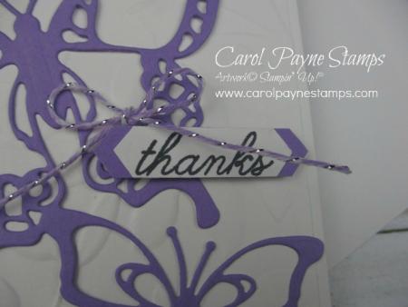Stampin_up_beauty_abounds_carolpaynestamps2