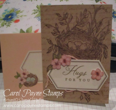 Stampin_up_shelli_paper_pumpkin_carolpaynestamps1