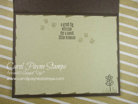 Stampin_up_a_little_wild_carolpaynestamps5
