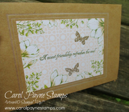 Stampin_up_butterfly_wishes_carolpaynestamps10