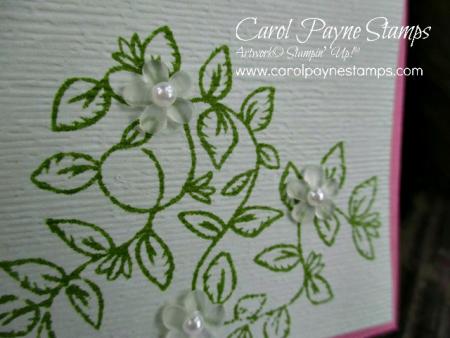 Stampin_up_verdant_garden_anniversary_carolpaynestamps3-1