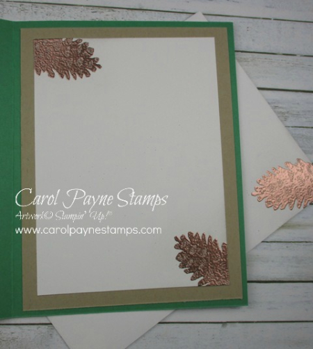 Stampin_up_more_than_words_carolpaynestamps4