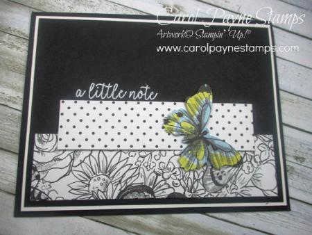Stampin_up_butterfly_gala_carolpaynestamps5