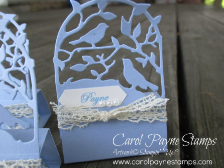 Stampin_up_botanical_tags_carolpaynestamps2