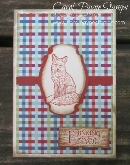 Stampin_up_natures_beauty_carolpaynestamps1
