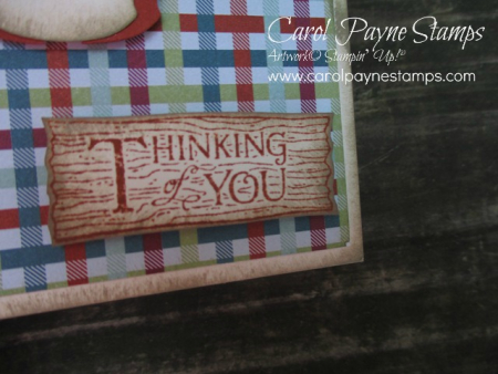 Stampin_up_natures_beauty_carolpaynestamps3