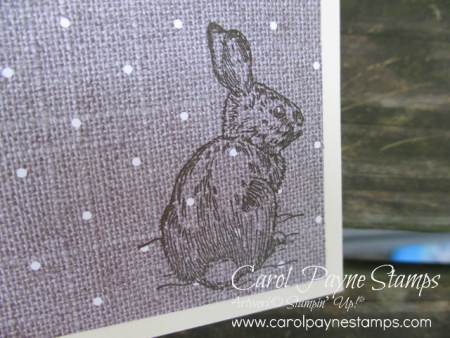 Stampin_up_natures_beauty_carolpaynestamps2