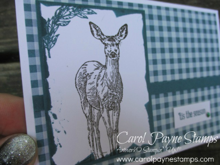 Stampin_up_gingham_natures_beauty_carolpaynestamps2