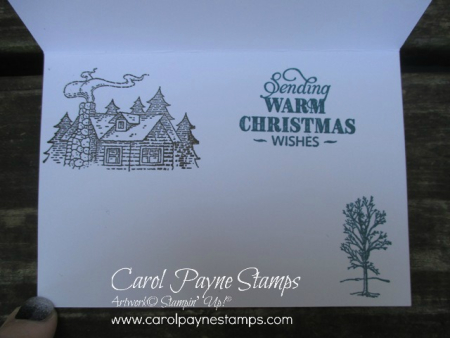 Stampin_up_gingham_natures_beauty_carolpaynestamps4