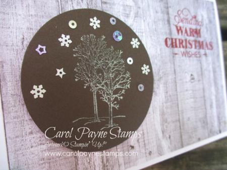 Stampin_up_natures_beauty_christmas_carolpaynestamps2