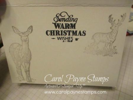 Stampin_up_natures_beauty_silver_carolpaynestamps4