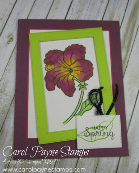 Stampin_up_humming_along_carolpaynestamps4