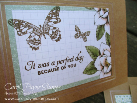 Stampin_up_butterfly_wishes_carolpaynestamps3