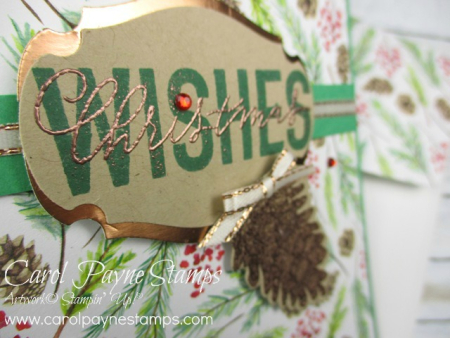 Stampin_up_more_than_words_carolpaynestamps2