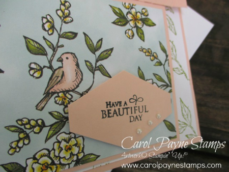Stampin_up_free_as_a_bird_carolpaynestamps2