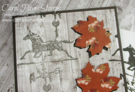 Stampin_up_country_roads_carolpaynestamps3
