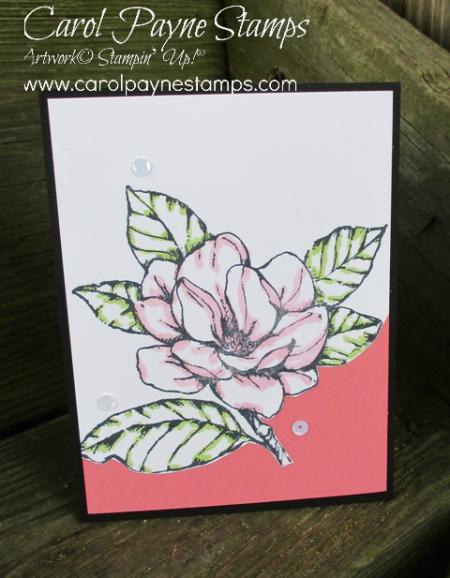 Stampin_up_good_morning_magnolia_carolpaynestamps5