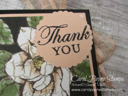 Stampin_up_magnolia_blooms_carolpaynestamps2