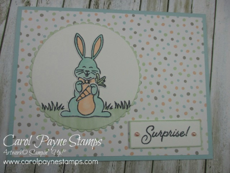 Stampin_up_best_bunny_carolpaynestamps4