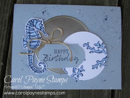 Stampin_up_seaside_notions_carolpaynestamps3