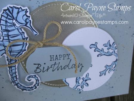 Stampin_up_seaside_notions_carolpaynestamps4