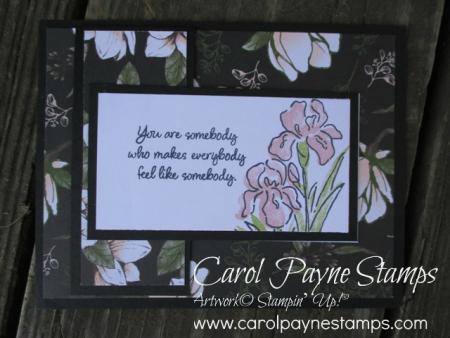 Stampin_up_inspiring_iris_carolpaynestamps1