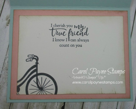 Stampin_up_bike_ride_carolpaynestamps6