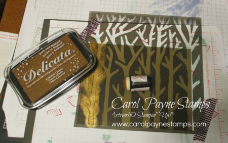 Stampin_up_natures_beauty_carolpaynestamps6