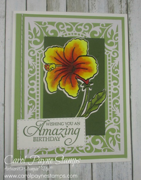 Stampin_up_humming_along_carolpaynestamps3