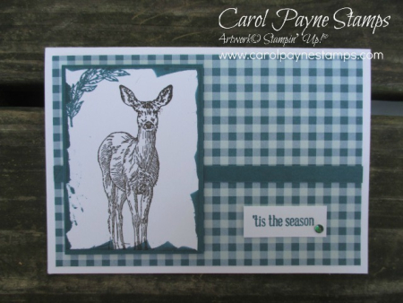 Stampin_up_gingham_natures_beauty_carolpaynestamps1