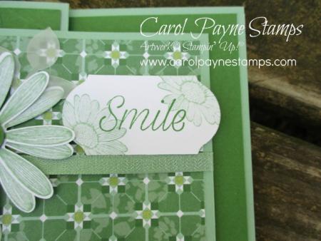 Stampin_up_daisy_lane_carolpaynestamps4