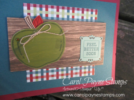 Stampin_up_harvest_hellos_carolpaynestamps9