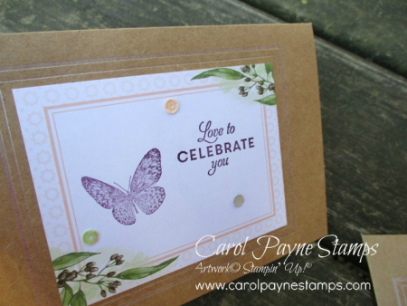Stampin_up_butterfly_wishes_carolpaynestamps2