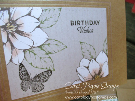 Stampin_up_butterfly_wishes_carolpaynestamps4