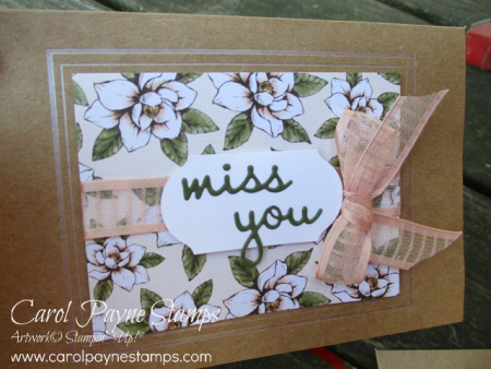 Stampin_up_butterfly_wishes_carolpaynestamps5