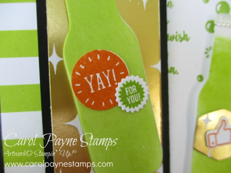 Stampin_up_bubble_over_carolpaynestamps3