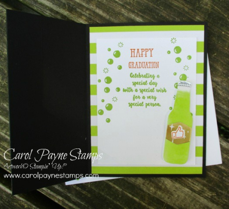 Stampin_up_bubble_over_carolpaynestamps4