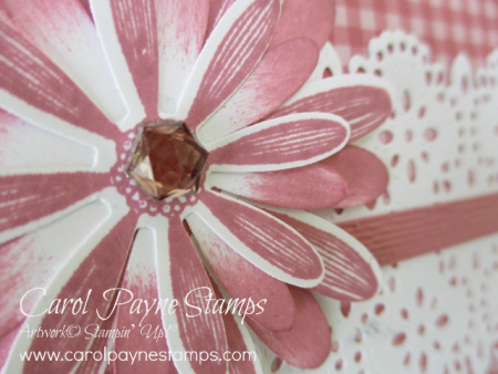 Stampin_up_daisy_lane_carolpaynestamps3-1