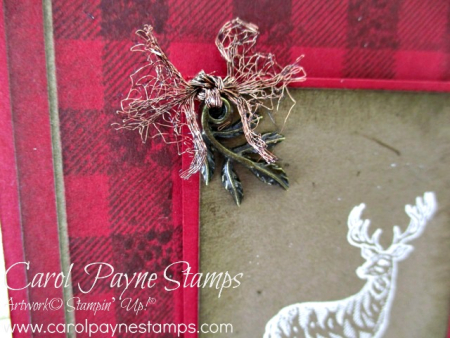 Stampin_up_rustic_retreat_carolpaynestamps3-1