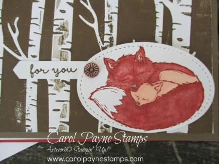 Stampin_up_wildly_happy_carolpaynestamps2