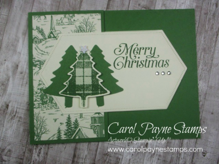Stampin_up_perfectly_plaid_carolpaynestamps6-1