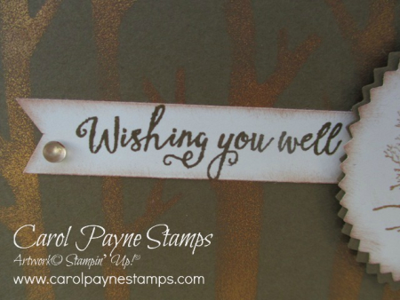 Stampin_up_natures_beauty_carolpaynestamps4